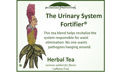 043_urinary_system_fortifier
