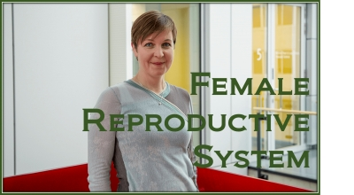 PathologyPrevention With The Female Reproductive System